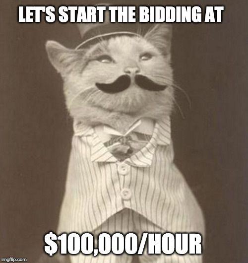100k-cat-big