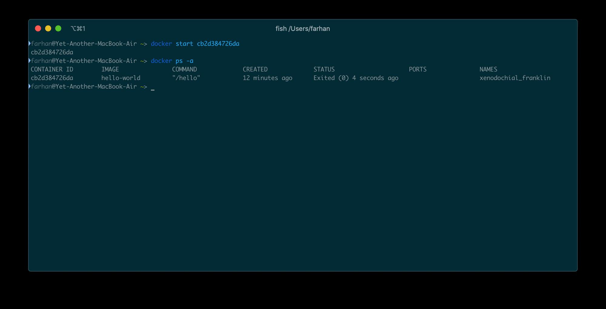 docker start cb2d384726da`および`docker ps -a`コマンドからの出力