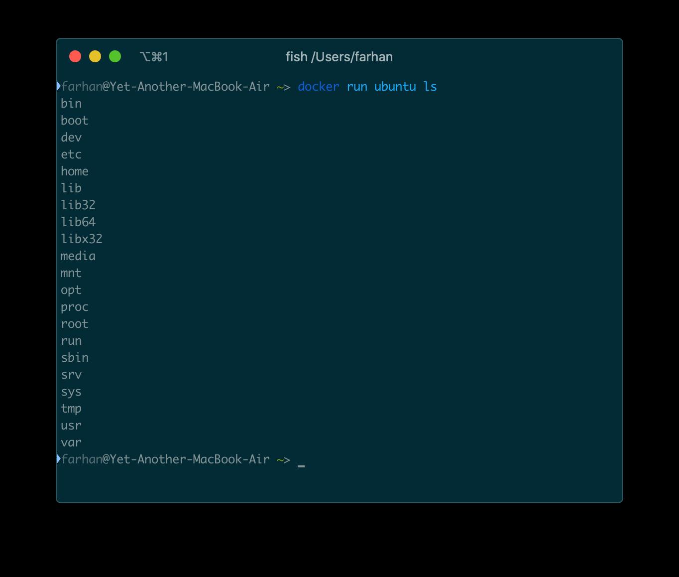 docker run ubuntu ls コマンドからの出力