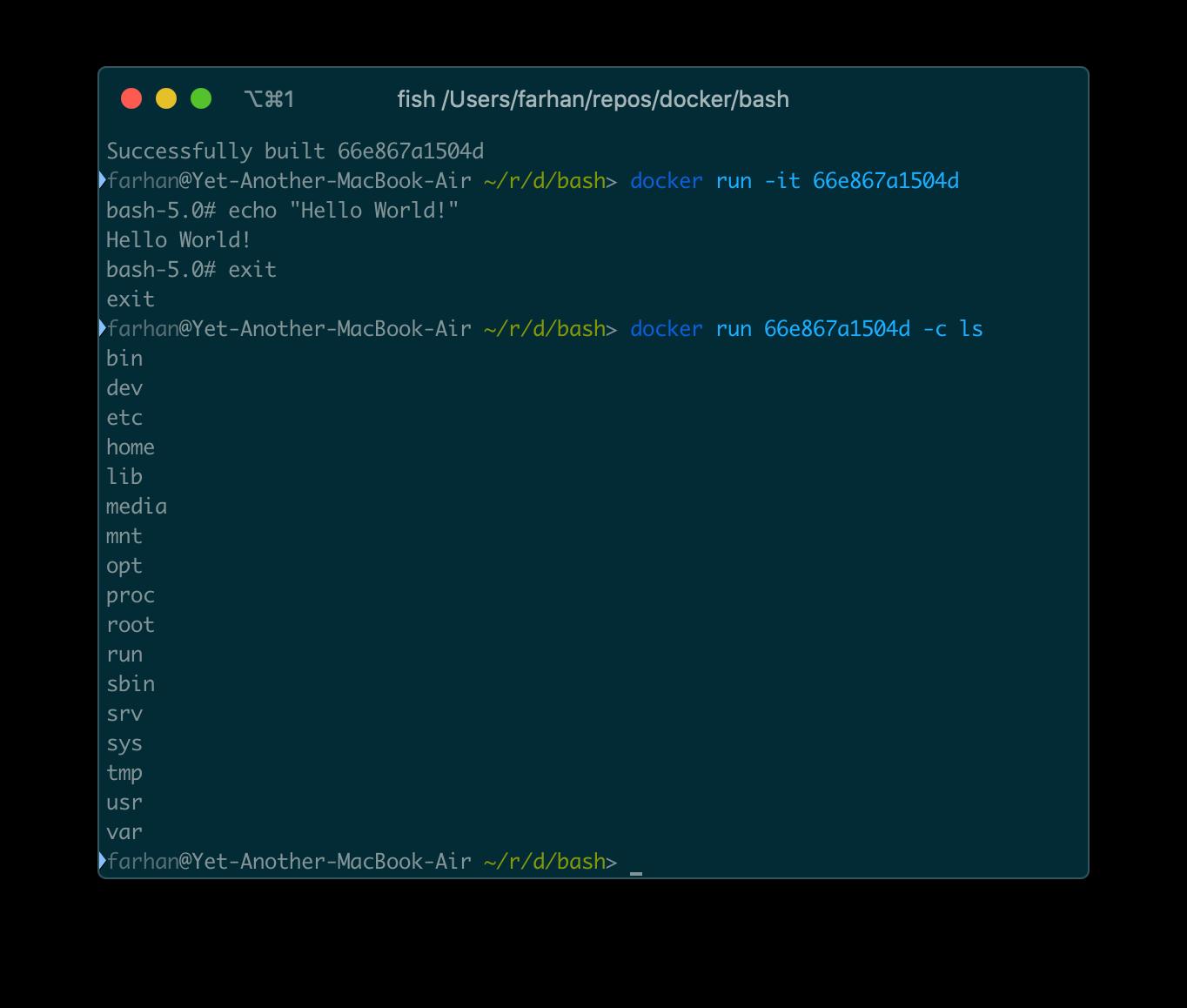 docker run 66e867a1504d -c ls コマンドからの出力