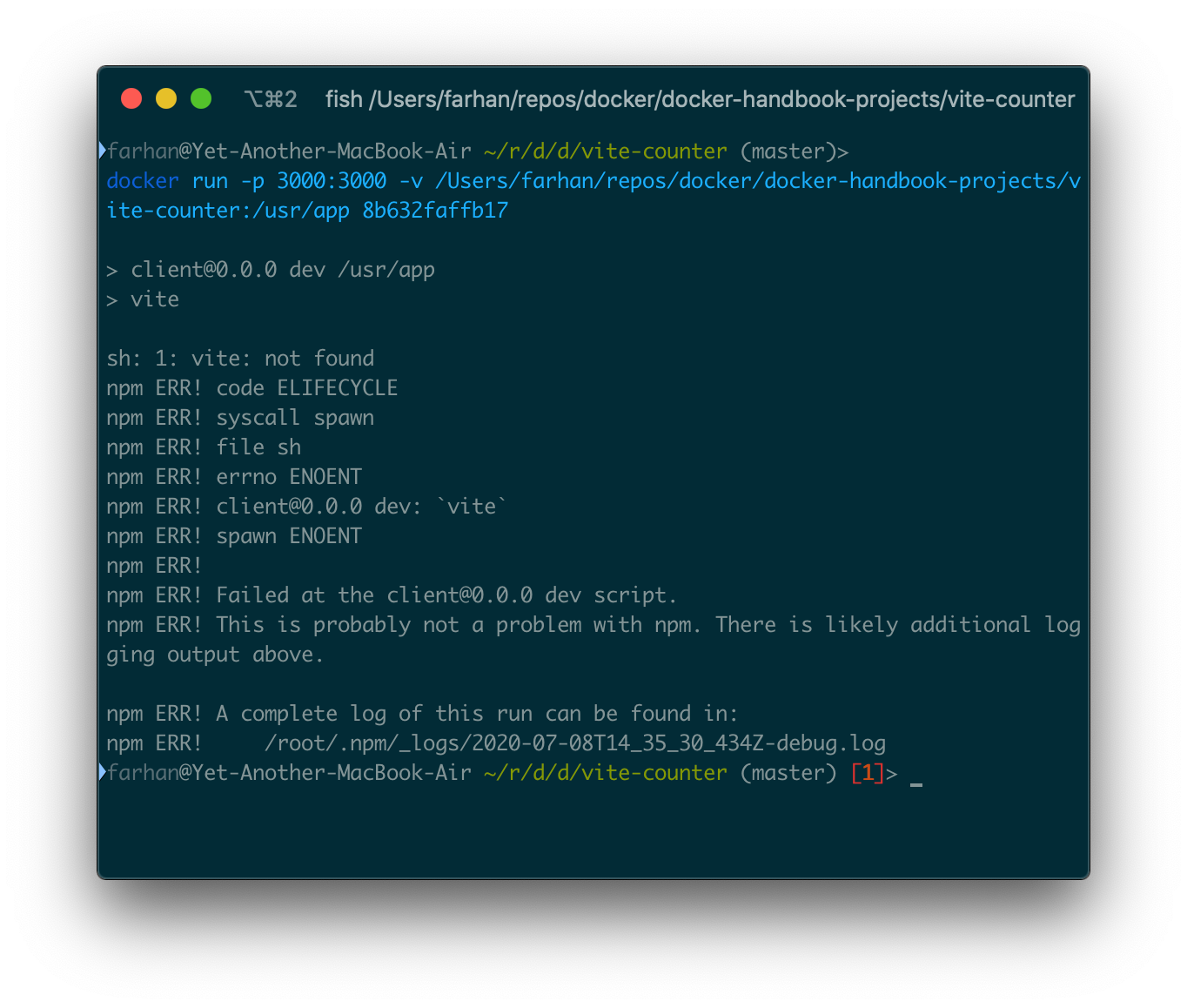 sh: 1: vite: not found error output