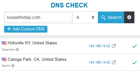 dns-check