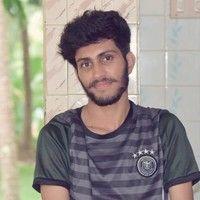 Bipin Krishnan P
