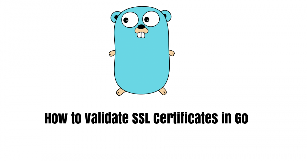 How to Validate SSL Certificates in Go