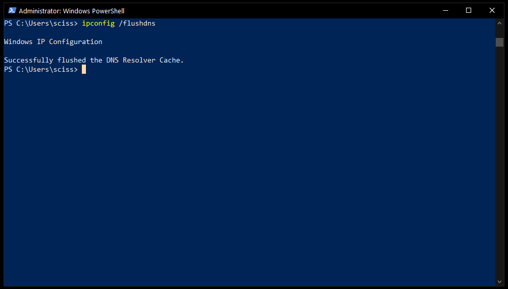 Screenshot showing how to flush the Windows DNS with PowerShell
