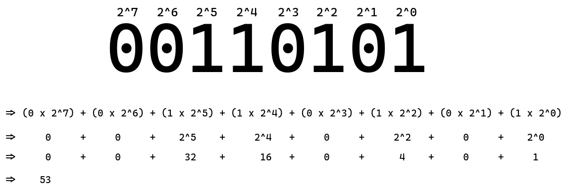 The procedure via which computers read binary codes