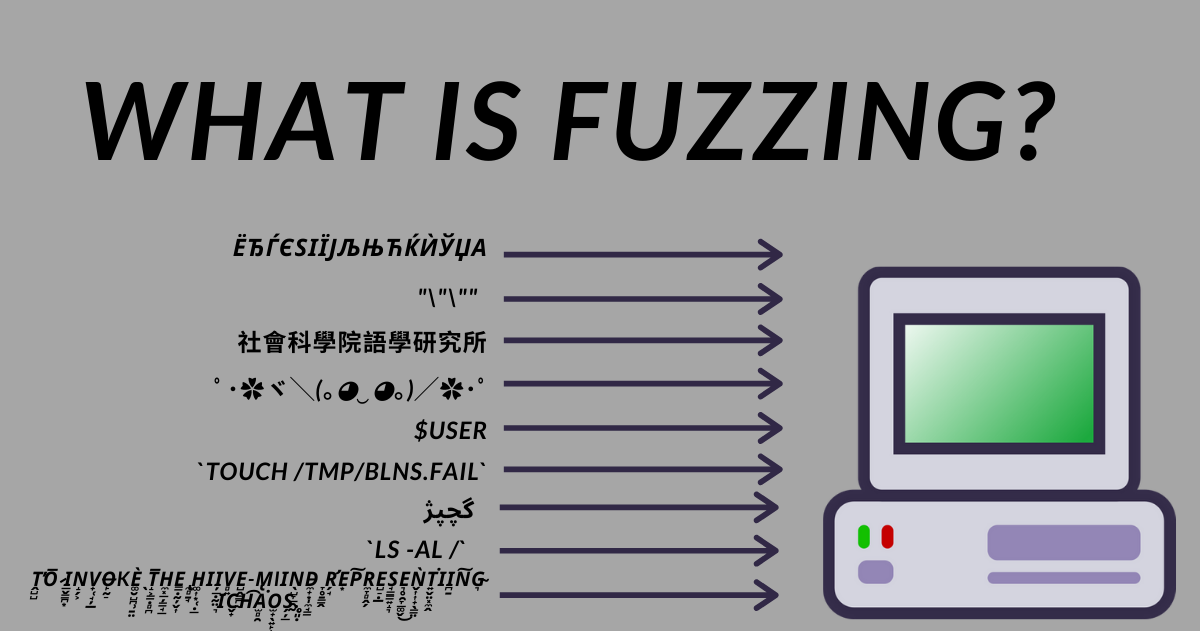 What is Fuzzing? Fuzz Testing Explained with Examples