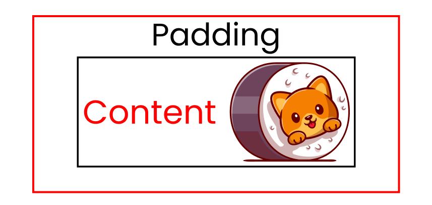 Cat image showing padding