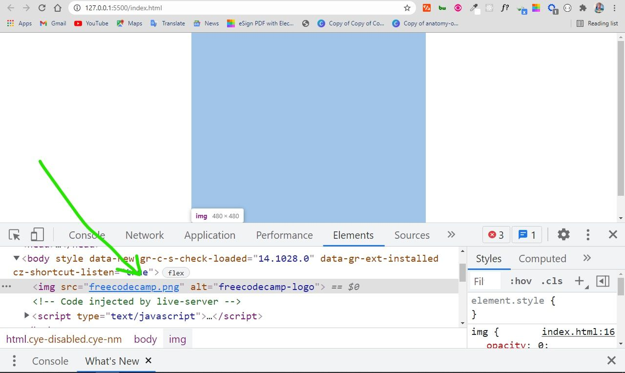 Transparent Background – Image Opacity in CSS and HTML