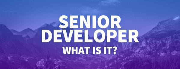 What Is a Senior Developer and How Can I Become One?